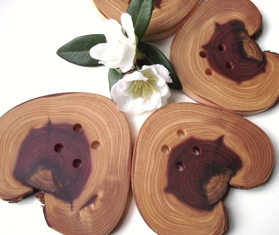 Buttons Wood - 4 Cedar Wooden Tree Branch Buttons - 2 5/8 x 2 3/8 inches, 4 Holes, For Knitting, Journals, Pillows, Purses