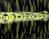 Quiet Reflection Mirrored Pines Peaceful Lake Echo Pine Trees Forest 11x14 Giclee Green Rustic Cabin Lodge Photograph