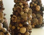 Decorative Nut Tree Set of 3