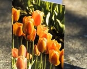 Orange Tulips Photo Greeting Card Blank - Nature Photo Card - Flower Card - Garden Card - Tulip Festival Photography Card
