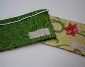 Two Cash Envelopes- Spring Green