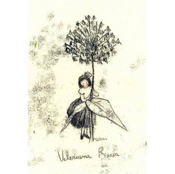 Original Illustration ink Monotype - Valeriana Rossa -