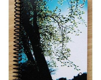 blank notebook - Endless Evening
