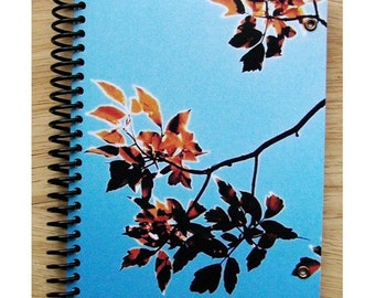 blank notebook - Autumn Leaves 1