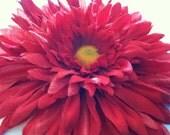 Big red hair flower