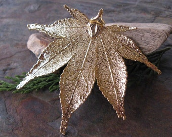 One 24KT Gold Dipped Japanese Maple Leaf Pendant