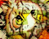 eye of the  tiger  11x14 limited edition print - lizwill