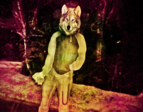 wolf  Contemporary Art Print