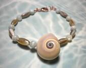 Seashell Bracelet Sharks Eye Shell