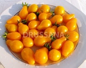 Heirloom Yellow Pear Tomato Seeds