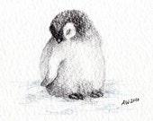 1 Little Penguin Chick - Original Pencil Drawing