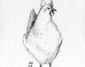 Chook - Original pencil sketch