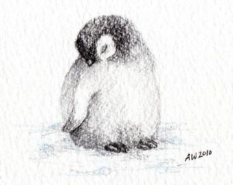 Little Penguin Chick - Original Pencil Drawing
