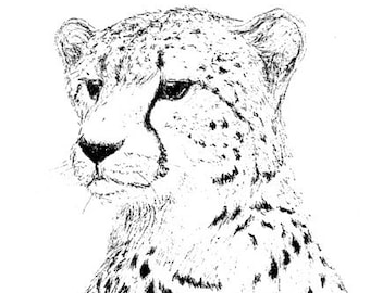 Cheetah Ink Drawing Embellished MiniPrint