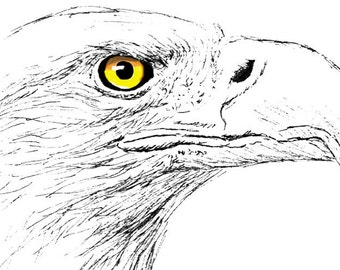 Bald Eagle Ink Drawing Embellished MiniPrint