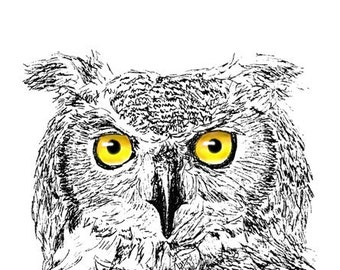 Great Horned Owl Ink Drawing Embellished MiniPrint
