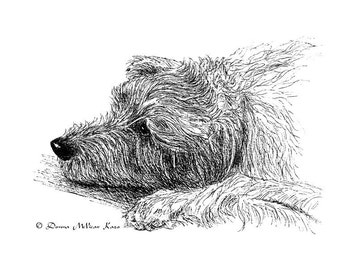 Irish Wolfhound Ink Drawing Embellished MiniPrint