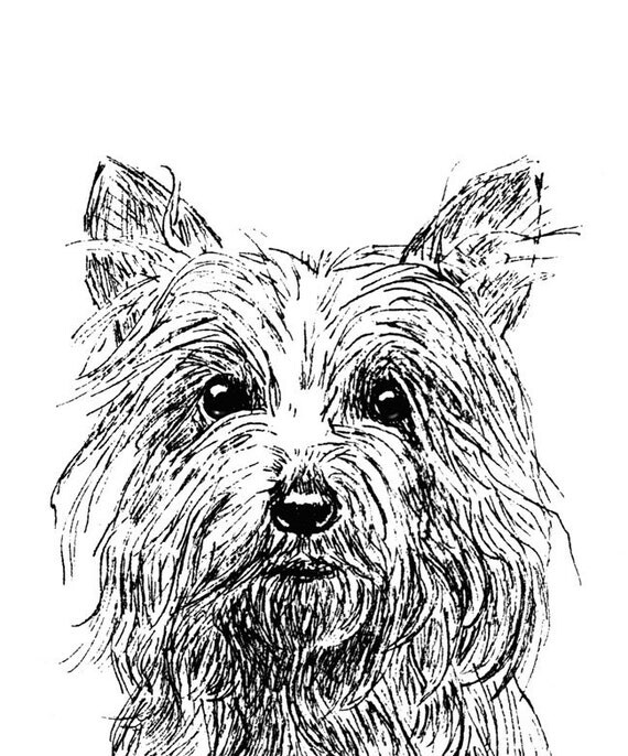 Cute Terrier Pen and Ink SALE Matted Print 9 x 12