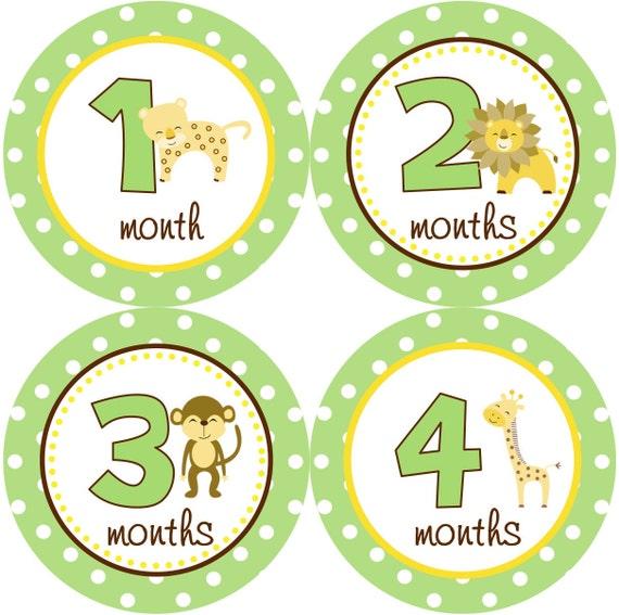 Baby Month Stickers Boy Monthly Onesie Stickers Green Yellow Safari Jungle Monkey Lion Month Stickers Baby Shower Gift Photo Prop Caden