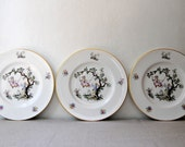 Set Of 12 Pink Royal Worcester Bone China Dinner Plates
