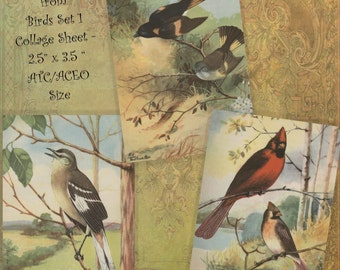Instant Download Digital Printable Collage Sheet 2.5 x 3.5 ATC ACEO size - Birds Set 1