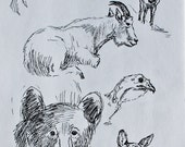 Wildlife Sketches