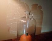 Spooky Hand Blown Glass Bell Jar