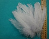 Satin White Goose Feathers.