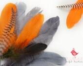 VOGUE GOOSE NAGOIRE feathers Assortment 007, pantone color of the year, orange, medium grey, blue grey