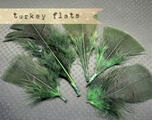 1 dozen - FOREST GREEN - Turkey Flat Plumages, loose feathers