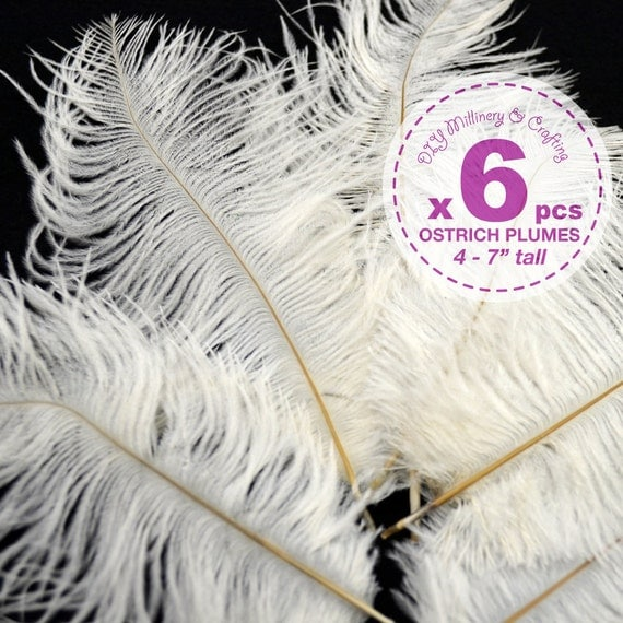 6 pcs - Ostrich Plumes, 4 to 7 inches tall, White, Costume, Bridal, more sizes and color available