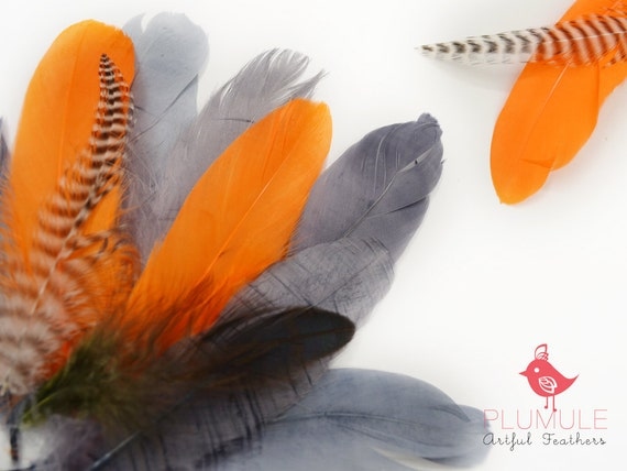 VOGUE GOOSE NAGOIRE feathers Assortment 007, pantone color of the year, orange, medium grey, blue grey