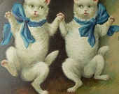 White Dancing Cats Blue Bows c.1909 Vintage Victorian Postcard