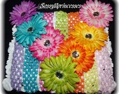 Hair bow Flower Clips and Headbands.Lot of 14 Pieces...Great hairbow for Infant Toddler and Big Girl Wear