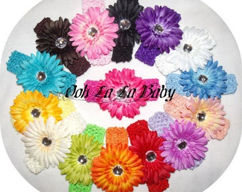 Flower Clips PIck 10  BeAuTiFuL Gerber Daisy Flower Clips AND 10 Interchangeable Headbands..Newborn Toddler Big Girl hairbows