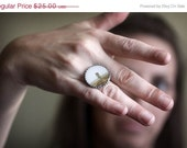 25% OFF SALE Guardian of the Land -  Photograph Ring - original photography