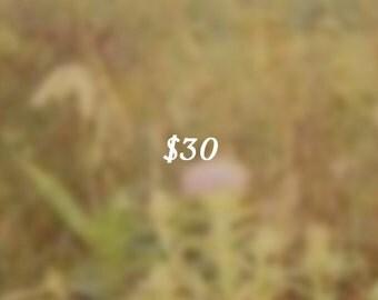 30 Dollar Gift Certificate