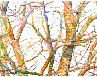 Art Painting- print from Original Watercolor Painting--Branches in Maine (Spring) watercolor art, trees, nature