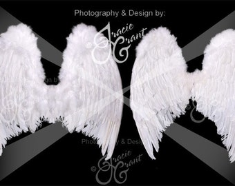 Angel Wings Digital Photography Prop EDITABLE PSD FILE 9997