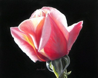 Rose Giclee Print Dawn's Early Light - Rose, Framed Canvas Giclee Print of a Soft Pastel Painting by L. Merchant, 8x10 inches.