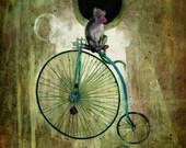 Monkey Bike 1