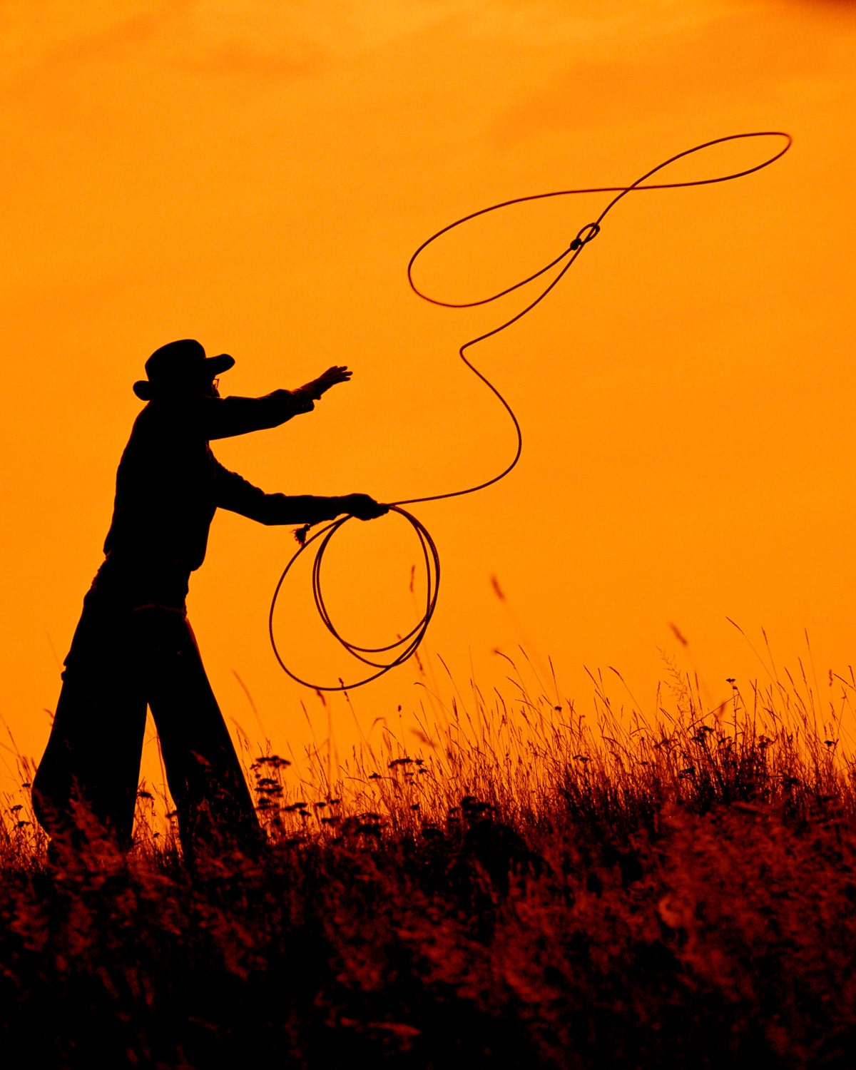 Team Roping Si   Team Roping Colored Silhouette