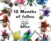 12 Kitten Toys for cats catnip kitty ball calendar themed designs