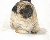 Cookie the Pug original  painting of a Fawn colored Pug