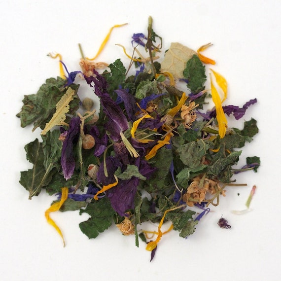 FREE SAMPLE Organic Autumn Tea Harvested by the Moon for Fall Season