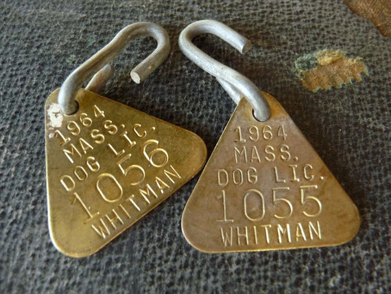Dog Tags -- Pair of Triangle Vintage Numbered 60s Dated Brass Dog License Tags 1964 Whitman MA Mass 1055 1056