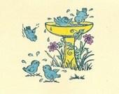 Backyard Birdbath