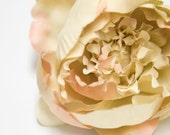 INVENTORY REDUCTION SALE - Photography Prop Perfect Portrait Small Peony in Peach Tipped Khaki Flower Hair Clip,