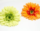 SALE - Real Natural Touch Waterproof Gerbera Daisy Flower Hair Clip, Light Green or Orange