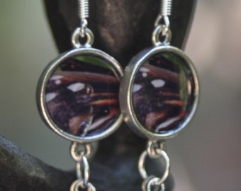 Earrings with photo of a butterfly wing, pearl and silver bead
